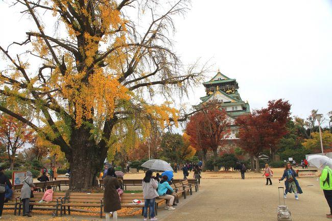 大阪城公園の紅葉 色あせ始め<br /><br />小雨がぱらつく生憎の天気でしたが、それはそれで紅葉を楽しむことができました。