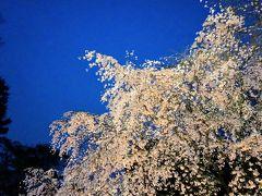 都立庭園カレンダーGET♪ 9か所都内庭園巡り ⑨ (六義園)