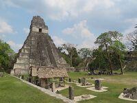 グアテマラ・ティカル遺跡 炎天下の巨大ピラミッド -2019年 中米 10-