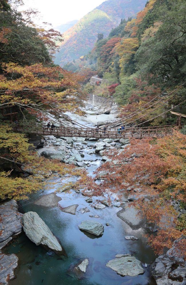 四国周遊・・日本3大秘境・祖谷渓と大歩危小歩危めぐります。