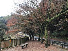 新川渓谷に紅葉を見に行って見ました