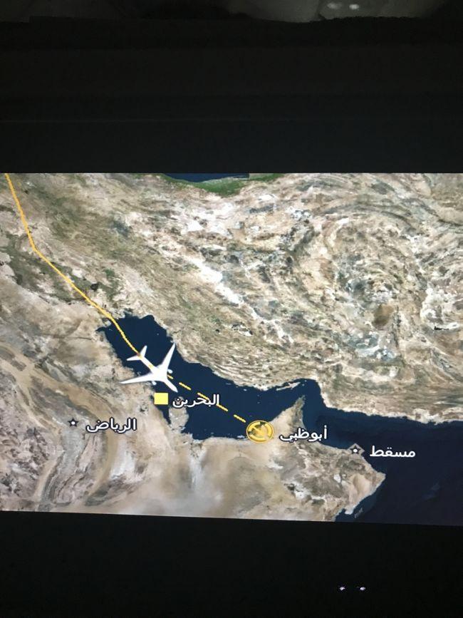 フランクフルト→アブダビ→名古屋の帰国フライトで<br />フランクフルト→アブダビ便が30分離陸が遅延。<br />アブダビでの乗継時間80分…<br />(エティハド航空同士の必要最低乗継時間は60分)<br /><br />アブダビに着陸したのは20分遅れ!<br />そんな女子一人旅の一部です。<br /><br /><br />【フライト予定】約87,000円<br />11/1 <br />EY889 NGO 21:15 → PEK 0:05  <br />11/2 <br />EY889 PEK 1:25  → AUH 6:35<br />EY007 AUH 9:15 → FRA 13:25<br />11/10<br />EY002 FRA 10:45 → AUH 20:00<br />EY888 AUH 21:20 → PEK 8:50<br />EY888 PEK 9:50 → NGO 13:45<br /><br />今回の旅で利用したエディハト航空の感想が主な内容です。