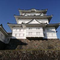 【小田原城観光所要時間60分】徒歩で観光マップを片手にさくっと天守閣まで登ってみたよ!