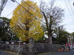 2019秋 岡山県津山市の徳守神社を目指して散歩