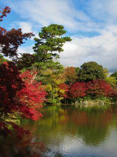 2019京都の紅葉② 「仙洞御所」「京都御所」「府立植物園」
