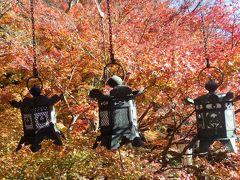 奈良県の紅葉名所を(談山神社・長谷寺・室生寺・大野寺)