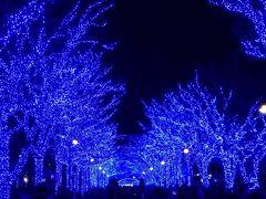 2017年 渋谷 青の洞窟 青、青、青の世界。