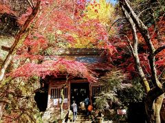 秋の大分巡り3日目。耶馬溪、羅漢寺、宇佐神宮。