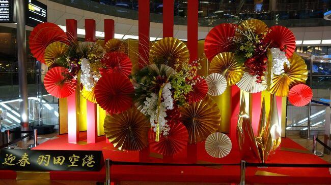【2019.12.28 - 2020.1.5】<br />  正月元旦人が超すごーい!!もみくちゃにされながらエリアを散策していきます。行先は行き当たりばったりの滅茶苦茶です。<br /><br /> その他は美容整形を受けに東京へ…というのが一番のメインの理由です。<br /><br /> ちなみにスカイツリーは今度こそ上るぞ!なーんて意気込んでたが…!年末年始は人がめっちゃいて…あとはお察しの通りです ((+_+))