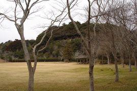 東庄県民の森でバードウォッチング [2013](1)