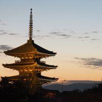 2019京都紅葉旅行(3)毘沙門堂、醍醐寺、清水寺、高台寺ライトアップ
