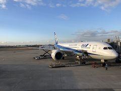 2019ANA乗り納め 日帰り大阪ITM-KIXオープンジョー!
