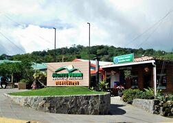 サン・ホセへの道 熱帯雨林の宝物たち、モンテベルデ 23