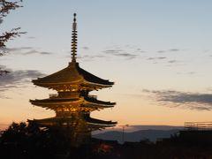 2019京都紅葉旅行(3)毘沙門堂、醍醐寺、清水寺、高台寺など
