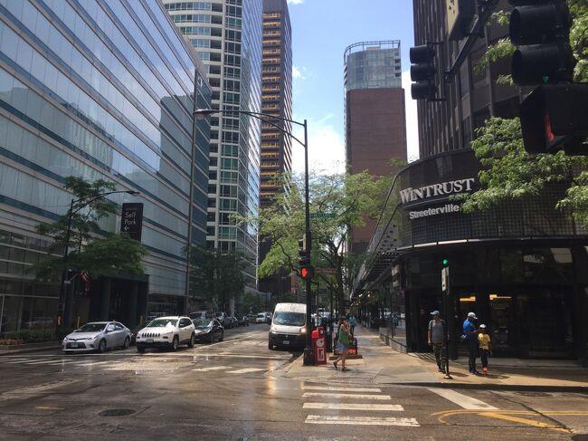 シカゴ市内でも指折りの高級マンション街となっているエリアで、さまざまな様式の建物が街の中で目につきます。近くに日本食レストランや日系企業が点在していることから、日本人住居者も見受けられます。また、高級ブティックやデパート、ホテルが並んでいるマグニフィセントマイルからも近く、華やかな場所です。