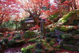 秋の安土をレンタサイクルでぐるぐる!(その3)