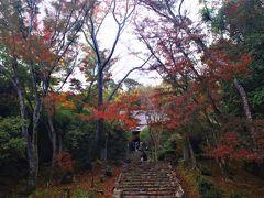 京都 秋の特別公開 洛西の紅葉と苔むした石段参道 浄住寺