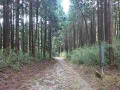箱根旧街道、山中城、三島スカイウォーク、名鉄ハイキング