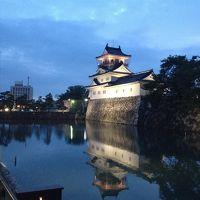 一時帰国旅行2015年6月(東京~富山~大阪)