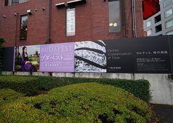 2019.12 国立新美術館「カルティエ、時の結晶 」「ブダペスト―ヨーロッパとハンガリーの美術400年」