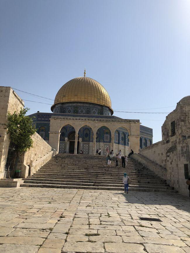 エルサレム最終日に、やっと旧市街ハイライト!<br />ユダヤ教、キリスト教、イスラム教の3つの宗教の聖地が、<br />同じ場所にあるという不思議。<br />情報が多すぎて理解ができなくて。体感のみです。<br />6日目を午前午後に分けようかと思うくらいの写真の量。<br />これでも減らしたのですがwww<br /><br />困ったときの神頼み、の私にとって<br />本当に宗教が難しく感じられた一日でした。<br /><br />【9/14:1日目】出発からアンマン到着まで<br />羽田空港 → ドーハ空港 → クイーン・アリア空港 → アンマン泊<br />------------------<br />【9/15:2日目】アンマンからエルサレムへ<br />アンマン → キング・フセイン橋 → エルサレム泊<br />------------------<br />【9/16:3日目】ベツレヘム(パレスチナ自治区)へ<br />エルサレム → ベツレヘム → エルサレム泊<br />------------------<br />【9/17:4日目】エルサレムから、JJ鉄道に乗ってテルアビブへ<br />エルサレム → テルアビブ → ヤッフォ → テルアビブ泊<br />------------------<br />【9/18:5日目】テルアビブから、イスラエル高速鉄道に乗ってエルサレムへ<br />テルアビブ → エルサレム泊<br />------------------<br />★【9/19:6日目】エルサレム旧市街を歩く<br />エルサレム泊<br />------------------<br />【9/20:7日目】エルサレムからアンマンへ<br />エルサレム → アレンビー橋 → アンマン泊<br />------------------<br />【9/21:8日目】アンマン街歩き<br />アンマン → クィーン・アリア空港(機内泊)<br />------------------<br />【9/22:9日目】羽田到着まで<br />クィーン・アリア空港 → ドーハ空港 → 羽田空港<br />