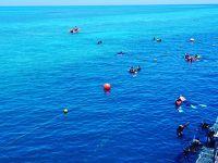 ハミルトン島-グレートバリアリーフ-