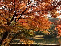 2019年12月 東京都 六義園 紅葉を見に