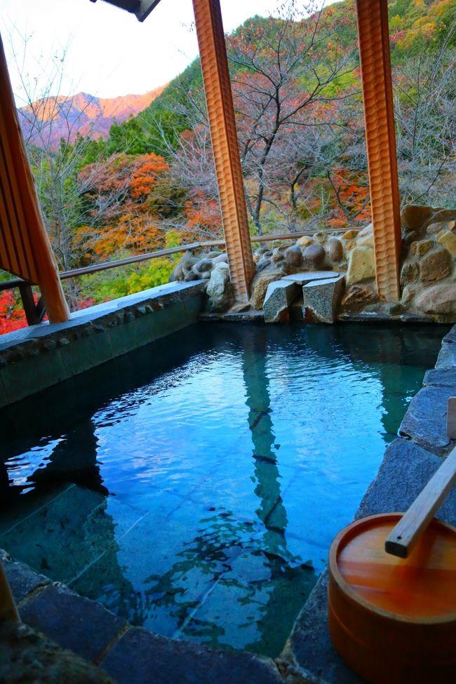 旅の始まりは、夫の誕生日祝いに「別邸仙寿庵」に泊まりたい!<br />夫の誕生日は10月。<br />半年以上も前から10月の三連休に予約を入れて楽しみにしていました。<br /><br />そして、あと一週間で温泉だーー!やっとだーー!とルンルン気分だった私達。<br />が、、、まさかまさかの台風が関東地方に上陸の予報。<br />そう、あの!甚大な被害を及ぼしたスーパー台風19号、、、。<br /><br />週の初めはまだ逸れるかなぁと希望を持っていましたが、<br />週の中頃には、<br />あ、、、もう、、、こ、、、こりゃ無理だな、、、。<br />と泣く泣く判断。<br /><br />旅館に連絡して三連休の予約はキャンセル。<br />土曜日で一番早く空いている日に変更していただきました。<br /><br />台風は猛烈だったものの、自宅や家族の家は何も被害がでず、一安心。<br />ただ、ニュースで流れてくる惨状に心が塞ぐ。。。<br />そんな中、開催されたラグビー日本代表の活躍に涙が出るほど感動!!<br /><br />そして、11月に変更してもらった温泉旅行に行ってきました。<br />お天気にも恵まれ、紅葉も楽しめて最高の旅行になりました。<br />夫の誕生日旅行というのはつい忘れがちでしたが、、、。笑。<br /><br />この旅行記ではチェックイン~お部屋~館内散策の模様を記します。