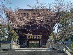 韓国まで愛媛経由で桜を追う18きっぷ旅(その4/釜山・博多編)