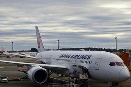 【フライト編16】世界一周ラストフライト!JALで帰国 ~ワンワールド世界一周航空券で2ヶ月の旅