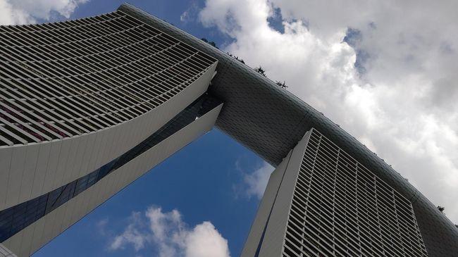ルックJTB うっとり夜景シンガポール 「シンガポールの名物夜景スポットから眺める」でのシンガポール旅行記です。<br /><br />日程(パンフレットでは)<br />2日目 日中は自由行動<br />    17:30:ホテル出発<br />       夕食はチキンライス<br />       夜景ハンター(夜の市内観光)<br />          オーチャード通り(車窓)<br />          ガーデンズ・バイ・ザ・ベイ(下車)、<br />          シンガポールフライヤー(乗車)、<br />          マーライオン公園(下車)、<br />          ガーデンズ・バイ・ザ・ベイで光と音楽のショー<br />                 「ガーデン・ラプソディー」鑑賞<br /> 21:30:ホテル着<br />