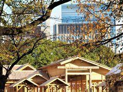 秋の皇居乾通り一般公開と大嘗宮一般参観☆^▽^☆