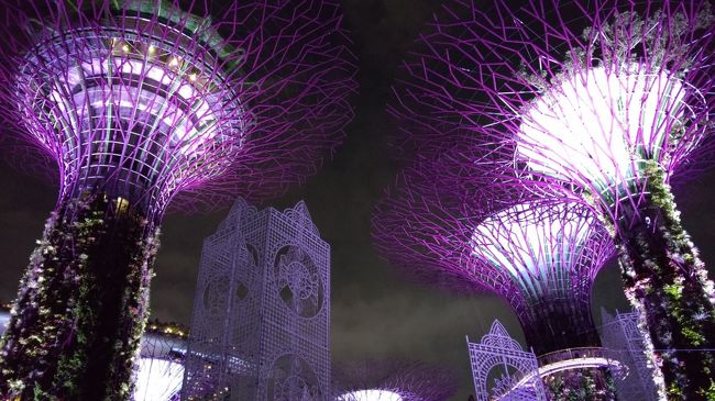 ルックJTB うっとり夜景シンガポール 「シンガポールの名物夜景スポットから眺める」でのシンガポール旅行記です。<br /><br />日程(パンフレットでは)<br /><br />2日目 日中は自由行動<br />    17:30:ホテル出発<br />       夕食はチキンライス<br />       夜景ハンター(夜の市内観光)<br />          オーチャード通り(車窓)<br />          ガーデンズ・バイ・ザ・ベイ(下車)、<br />          シンガポールフライヤー(乗車)、<br />          マーライオン公園(下車)、<br />          ガーデンズ・バイ・ザ・ベイで光と音楽のショー<br />                 「ガーデン・ラプソディー」鑑賞<br /> 21:30:ホテル着
