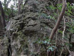 天園峠の岩