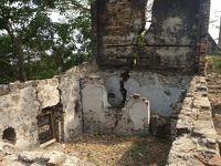 (45)2020年1月(4)シエラレオネ(フリータウン近郊ーバンス島(英国の奴隷貿易の拠点) タクグマ・チンパンジー・サンクチュアリ― )