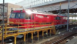 道民「私鉄分」摂取の旅 名鉄電車2DAYフリーきっぷ 2枚目 令和元年11月