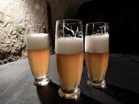 チェコの世界遺産12か所、すべてを巡るbaba友の旅【2】2日目(プルゼニュのビール醸造所)