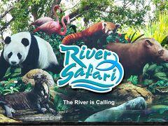 動物ずくめのシンガポールひとり旅 3 リバーサファリ アマゾンの部