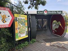 シダとキーウィの国NZ6(クィーンズタウン(キーウィ&バードライフパーク、マーケット、Jervois Steak House))