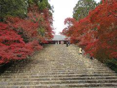 紅葉の高雄山三尾を歩く