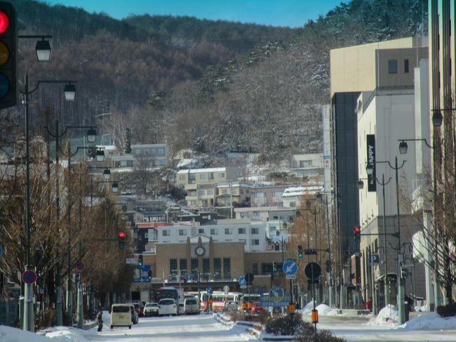今年の北海道は二度目ですが冬の小樽は久しぶりです。週間天気予報は雪だけれど、パウダースノーなので降雪はあまり気にしません。今回の旅は旅行社企画の「ミステリーツアー」です。宿泊等がランクアップされていましたのでとても楽しめました。東京より北の方角で防寒対策もして下さいとのことです。旅行会社は一生懸命のミステリー企画で、旅程の日程書には○○の観光・△△のSクラスホテルに宿泊、▲▲の体験などと記していましたが、エッヘッヘ~~~・・・全部のミステリー答えが正解出来ました。勿論のこと誰にも言いません・添乗員にはチラーッと。<br /> 週間天気予報は悪かったのに、降雪も、積雪も。残雪も、無くて、暖かい北海道の旅になりました。<br /> 新千歳空港着は、15:05時で「小樽」まで移動すると夜になります。観光の①は老舗の「田中酒造・亀甲蔵」でした。写真を撮る時間が無かったのでwebから拝借。見学後にSクラスの「小樽グランドパークホテル」の宿泊です。このどちらもピンポーンの正解でした。<br /><br />表紙の写真は JR「小樽」・ (撮影日は翌日の観光バス走行中・車窓から)