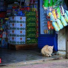 バンメトート市場