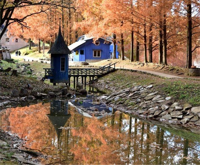 12月の平日 埼玉県飯能市の「トーベ・ヤンソン あけぼの子どもの森公園」へ 紅葉景色を見に行ってきました。<br /><br />ムーミン公園として知られる公園です。<br />平日の午前中だったからか、なぜか子供は1人も居なく<br />写真撮影に来ている大人がほとんど・・・。<br />遊んでいる子供に遠慮する事もなく 不思議な形のムーミンの世界感あふれる建物内外をじっくり鑑賞、<br />メタセコイヤの紅葉景色もたっぷり楽しむ事ができました。<br />