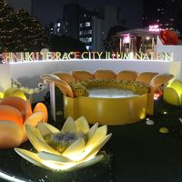 どういうわけか観劇つづきの12月☆その後のイルミネーション 今度は新宿☆