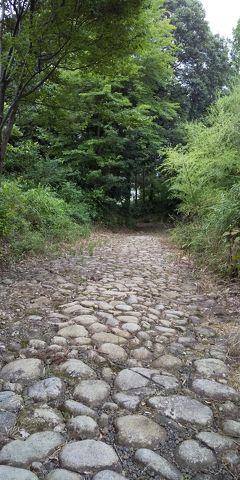 9_旧東海道五十三次歩き旅 島田~掛川(7/8 20km)掛川~袋井(7/9 12km)