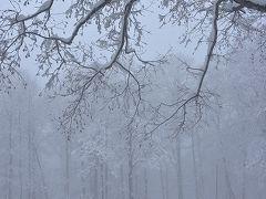 初冬の裏磐梯 自然の織り成す雪風景は素晴らしい。