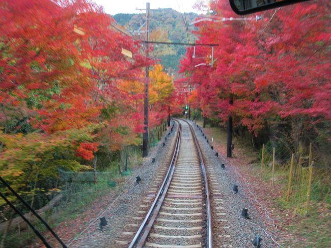 2019京都の紅葉⑨  叡山電鉄「もみじのトンネル」と「白龍園」の紅葉 2019/11/22