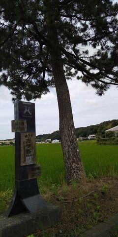 10_旧東海道五十三次歩き旅 袋井~天竜川駅(7/20 17.5km)