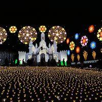 """栃木・あしかがフラワーパークのイルミネーション""""光の花の庭2019~""""を訪れて"""