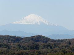 鎌倉三大富士見寺